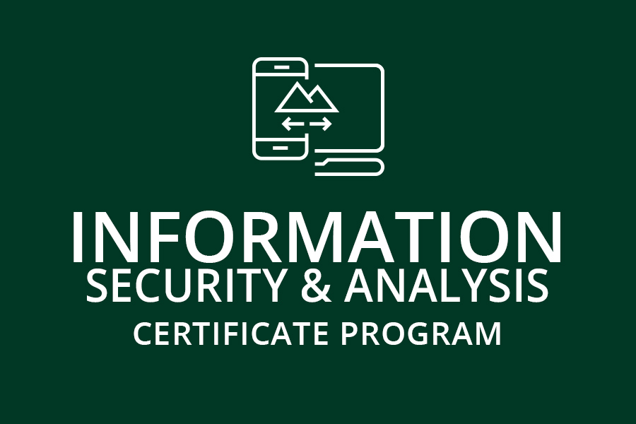 Information Security and Analysis