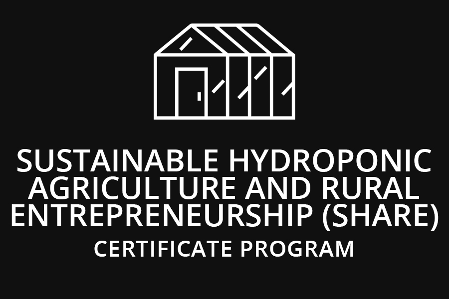 Sustainable Hydroponic Agriculture and Rural Entrepreneurship